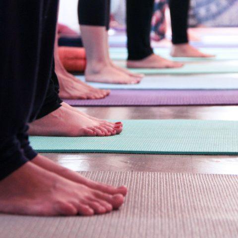 Anatomia Vivencial e Yoga